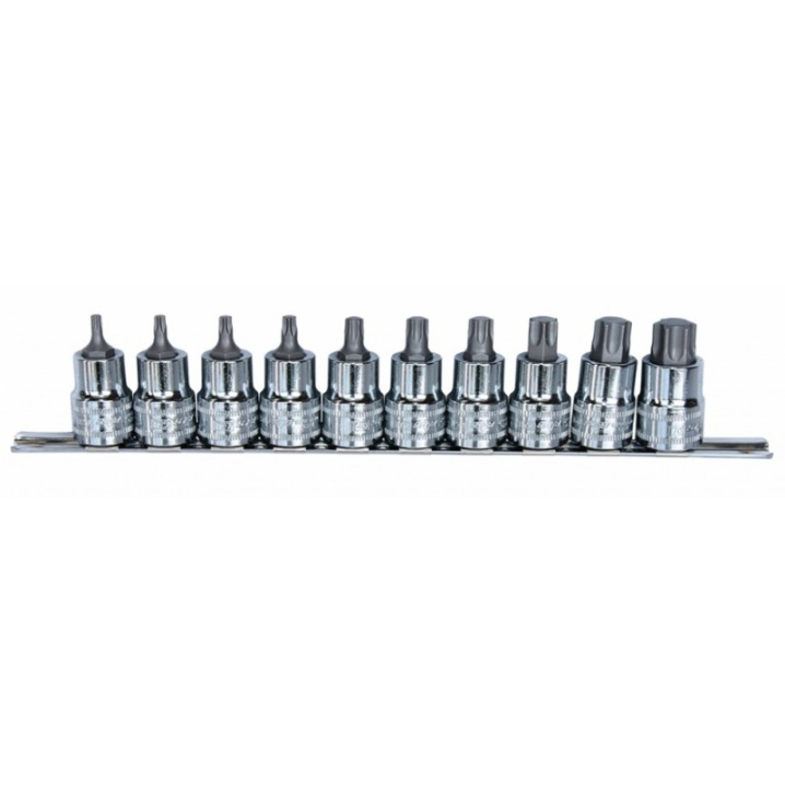 "10pc 1/2"" Dr Torx Socket Rail Set"